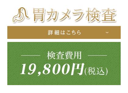 胃カメラ検査 詳細はこちら 検査費用19,800円(税込)
