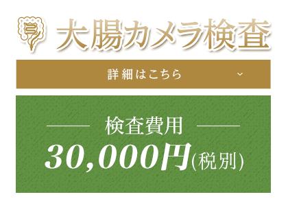 大腸カメラ検査 詳細はこちら 検査費用30,000円(税別)